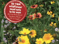 T & M wildlife garden seed competition