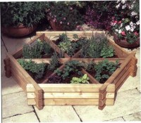 Growing Herbs or Vegetables in Garden Pots and Planters