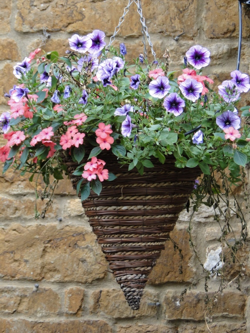 Container Gardening Ideas Unusual Hanging Flower Baskets