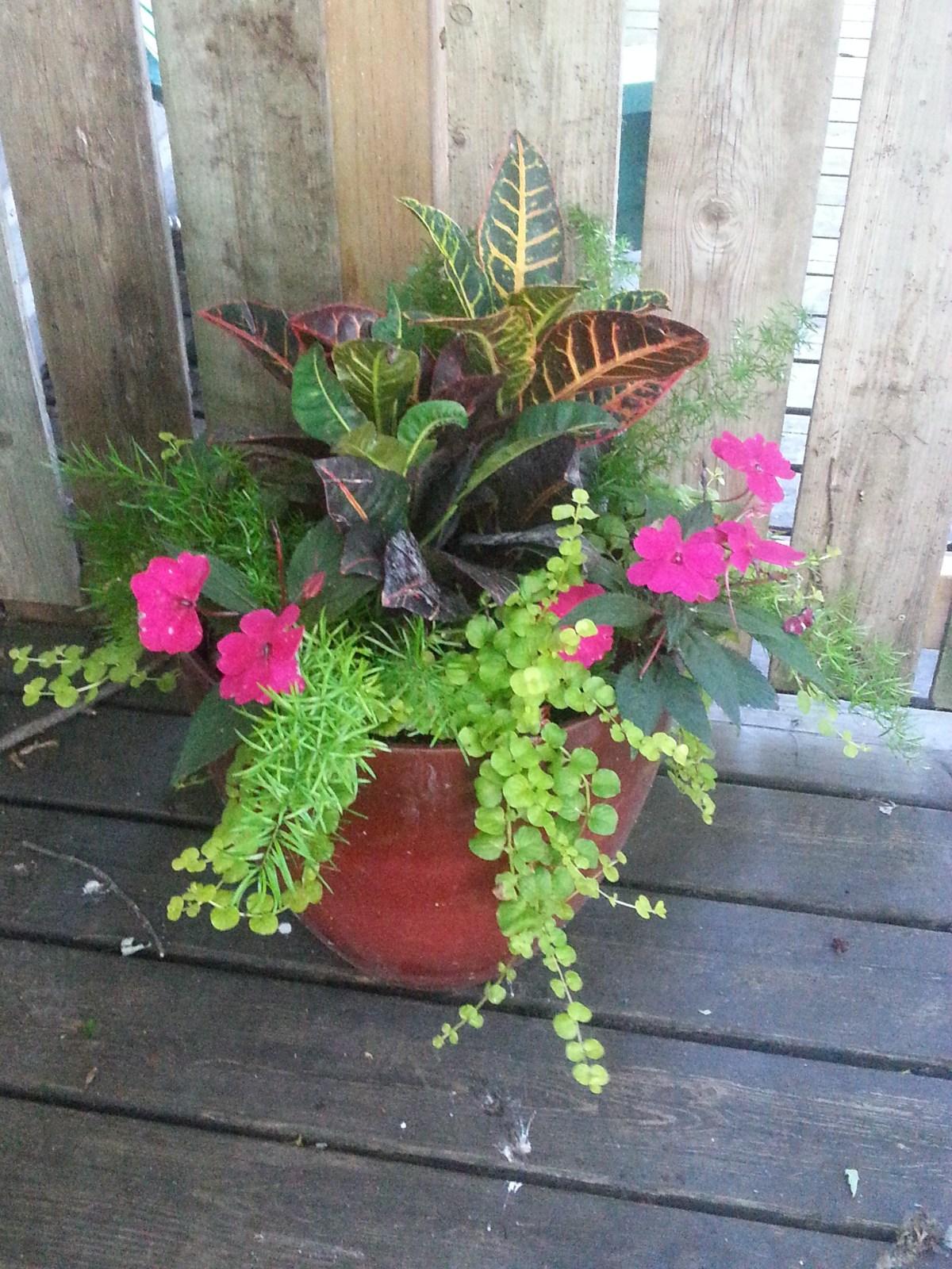 Shade planter ideas gardening in the shade shade planter ideas izmirmasajfo