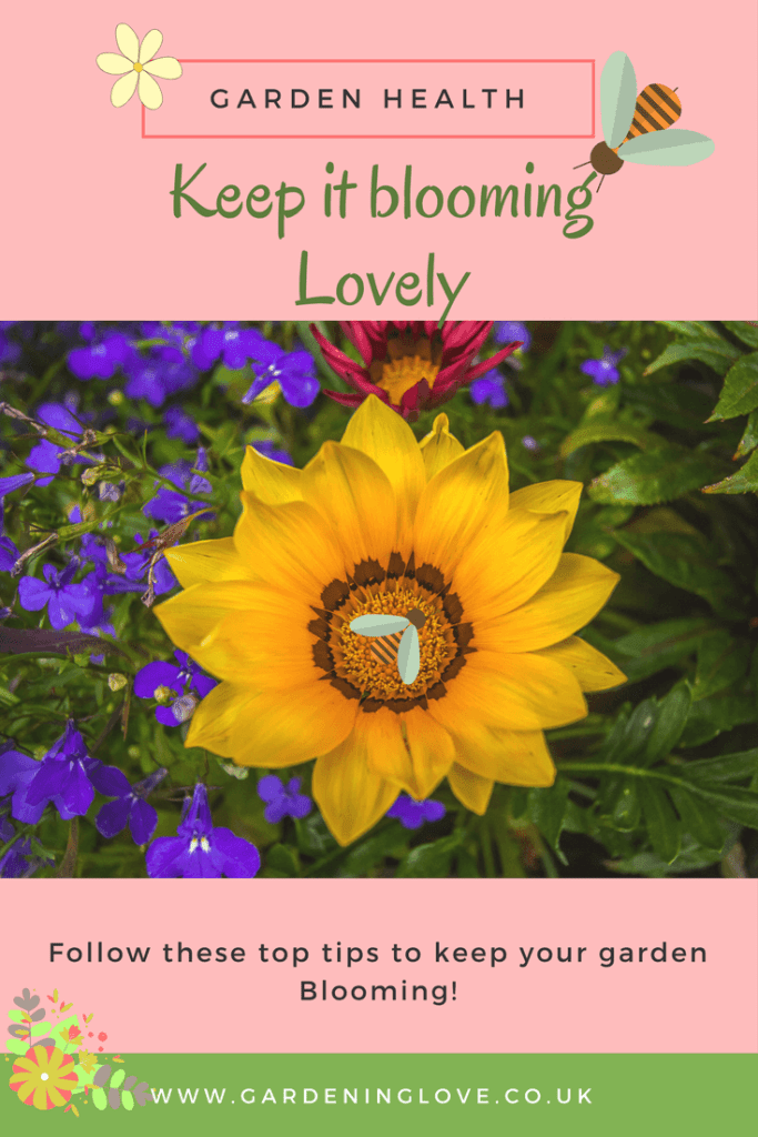 Garden health, keep it blooming lovely