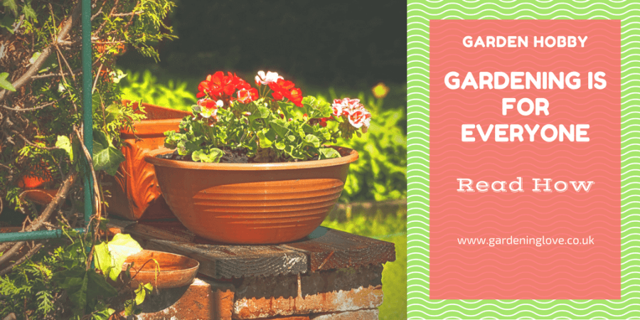 Garden hobby, discover a new hobby in gardening. Find how it could be perfect for you. #garden #gardening #gardeningideas