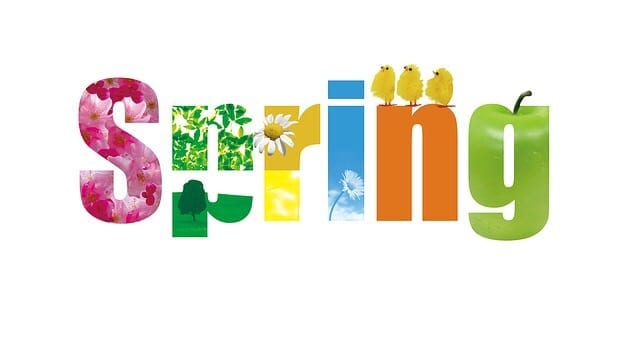 Spring Has Sprung ! Full Of The Joys Of Spring.