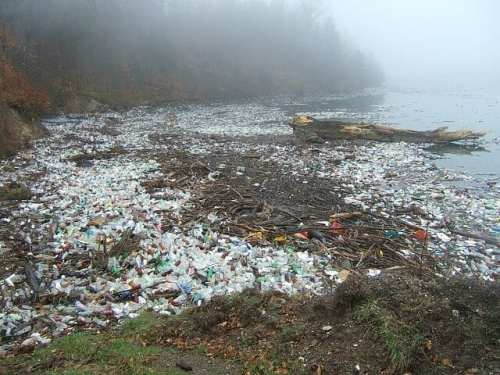 Recycle efficiently http://www.gardeninglove.co.uk/recycle-efficiently Masses of plastic waste lay across a shoreline.