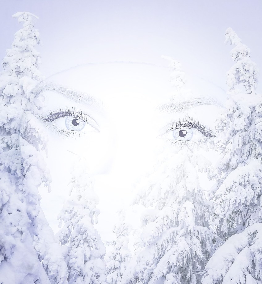 The eyes of a women staring through a winter scene with snow and winter blues framing her face