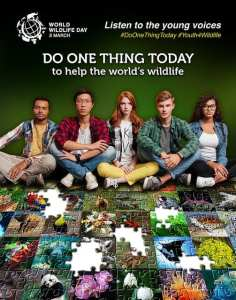 A group of youths sat amongst jigsaw puzzle images of issues that are affecting wildlife issues and endangered species. Campaign poster for World Wildlife Day 2017.