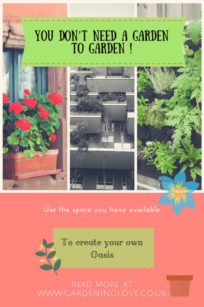 Balcony gardenening, high raised property gardening, vertical gardening. You dont need a garden to garden, smal garden ideas.