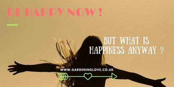 Happiness. Be happy now! But what is happiness anyway. Stood arms stretched in the sun.