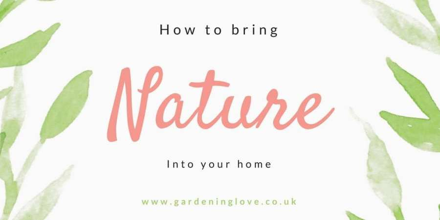 How to add nature to your home.