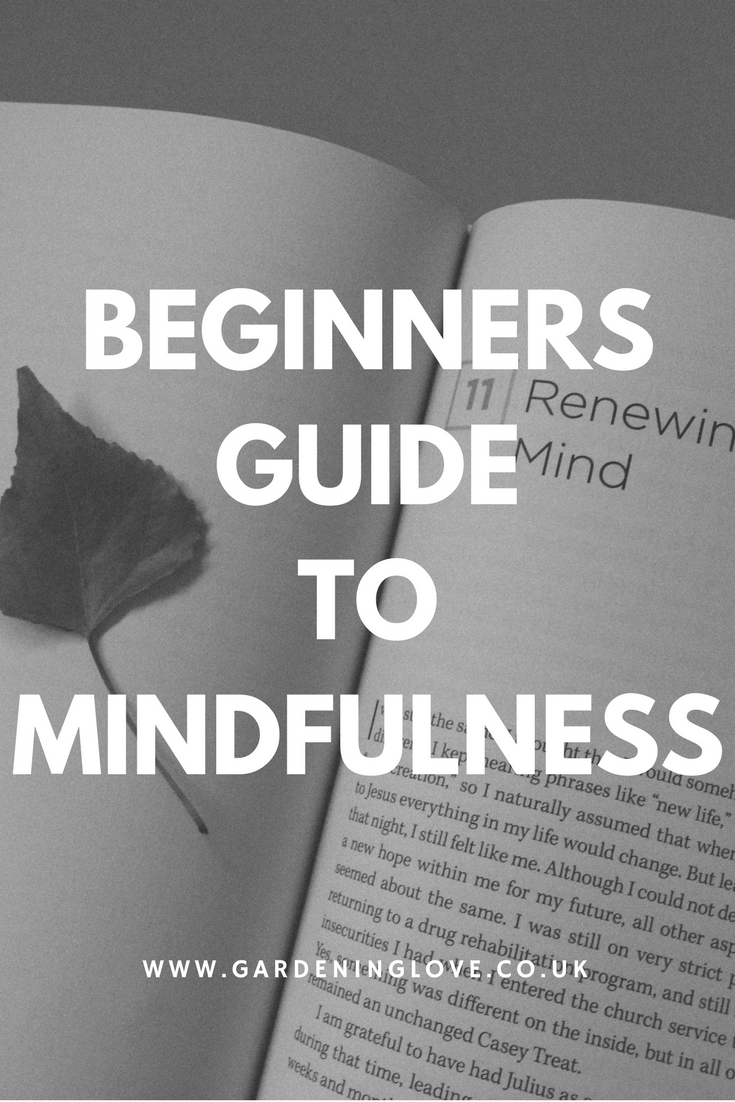 Mindfulness techniques for beginners. A beginners guide to mindfulness. How to be mindful .