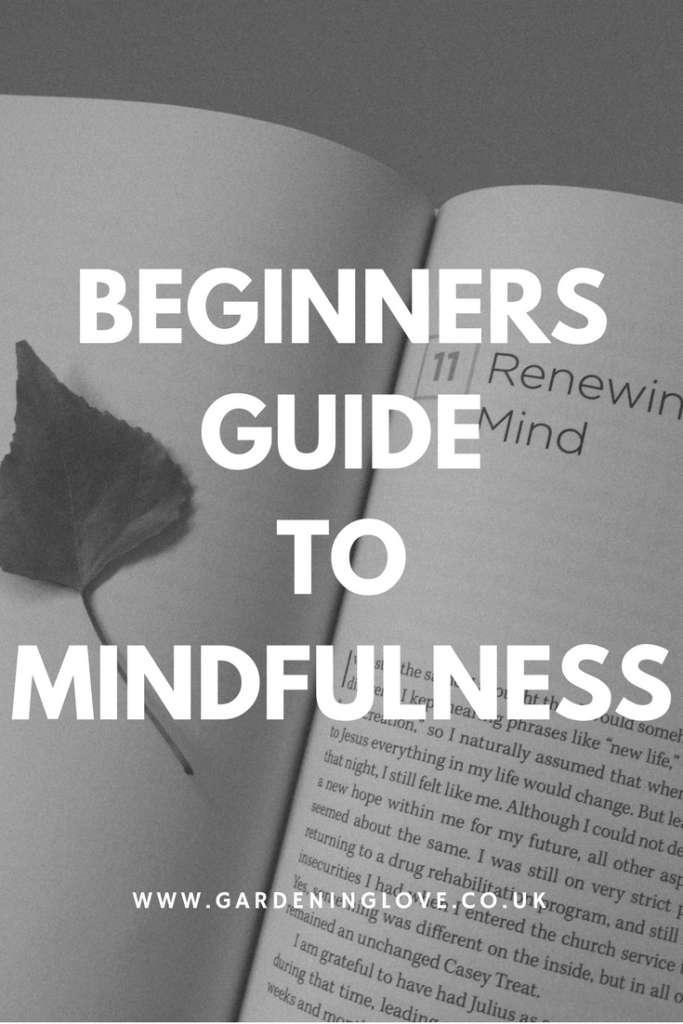 Mindfulness for beginners. A beginners guide to mindfulness.