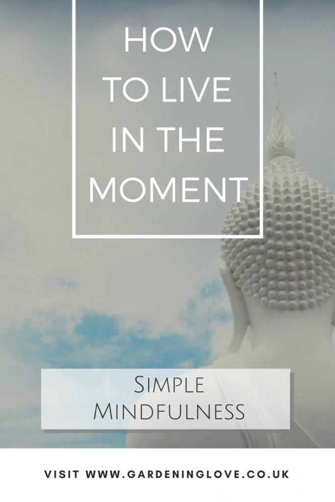 Mindfulness for beginners. Easy ways to practice living mindfully. Learn how to live in the moment. #mindfullness #begginersmindfulness #mindfulnessactivities #mindfulnesstechniques