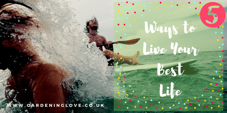5 ways to life your best life offers you ways to live life with more meaning and value. We all have dreams of living our best possible life, sometimes we fall off track. Get focused with these top tips #lifehacks #bestlife #inspiration #selfimprovement