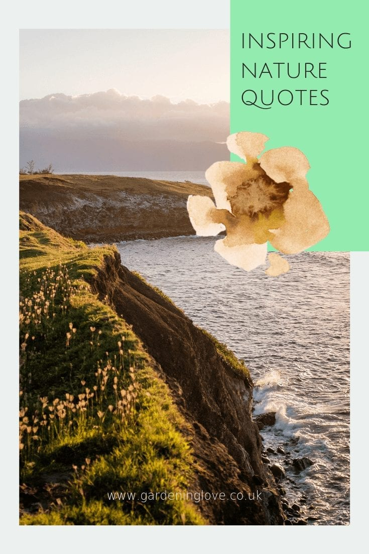 inspiring nature quotes to lift your mood and enhance your wellbeing. #quotes #inspiringquotes #nature #naturequotes #wordstoliveby #wordsofwisdom