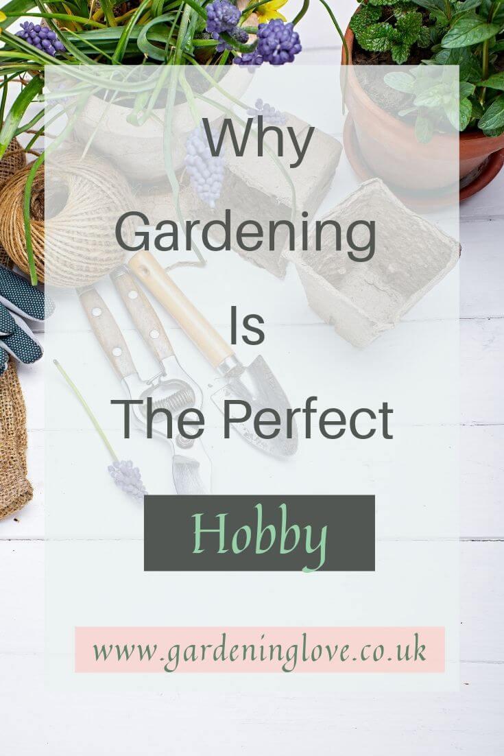 Why gardening is the perfect hobby. Learn how gardening can be a great hobby and why? #garden #gardening #hobby #hobbies #gardenactivities