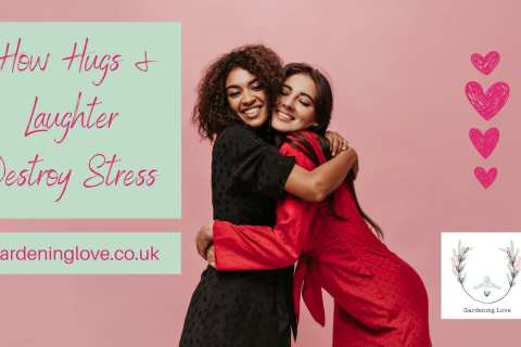 hugs and laughter destroy stress