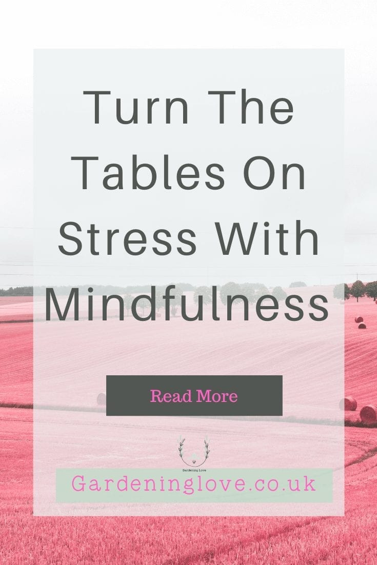 Mindfulness for stress relief. Learn simple ways you can use mindfulness in your daily life to bring a moment of calm to moments of stress. Mindfulness is super easy and everyone has the ability to reap the amazing benefits. #Mindfulness #Stress #StressRelief #MindfulnessExercises