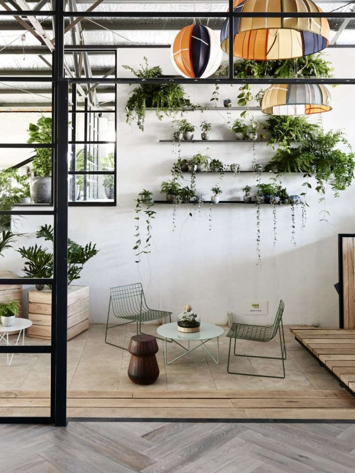 Vines Gone Wild 10 Rooms with Creeping Greenery  Gardenista
