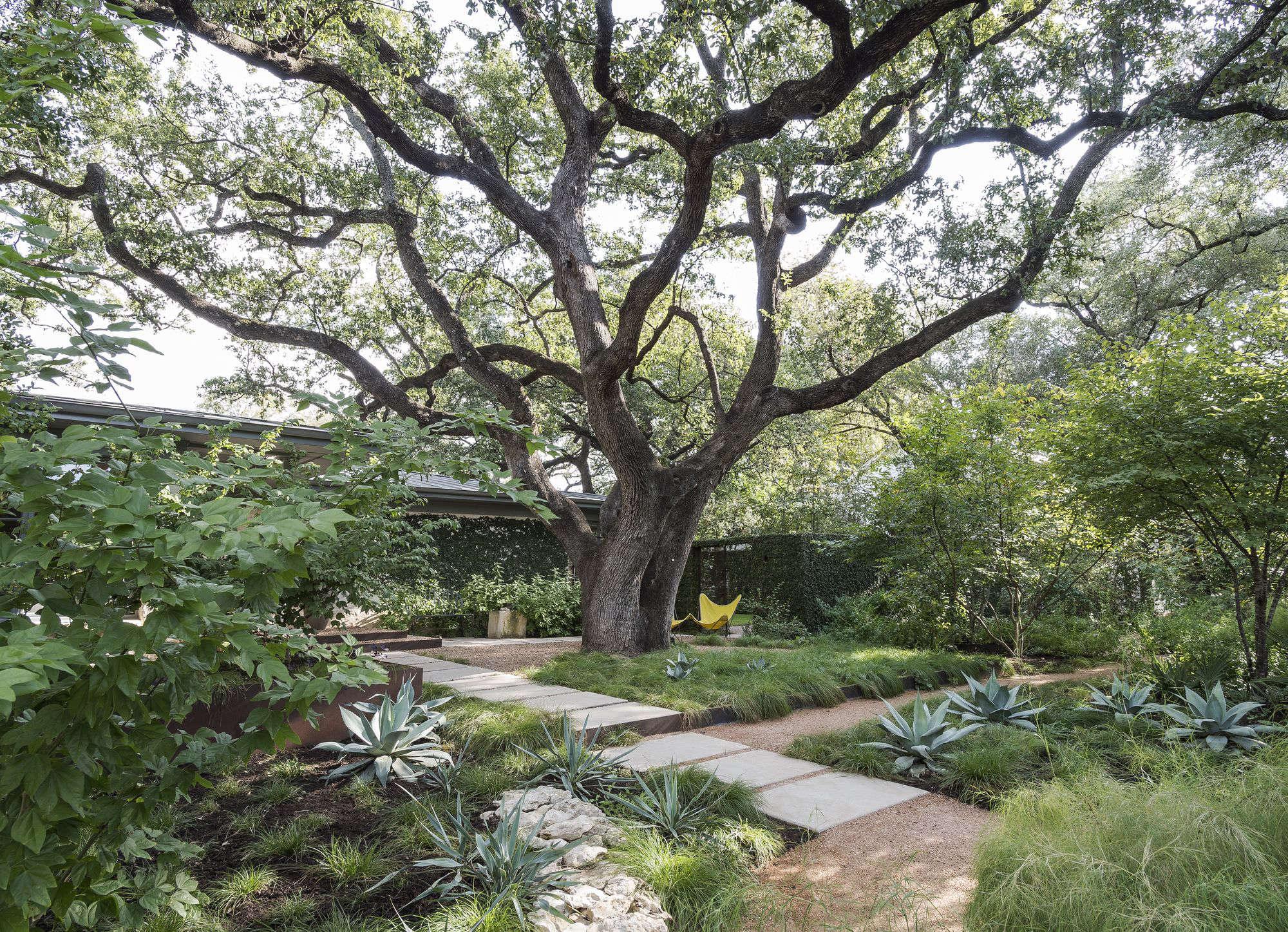 use decomposed granite in a landscape