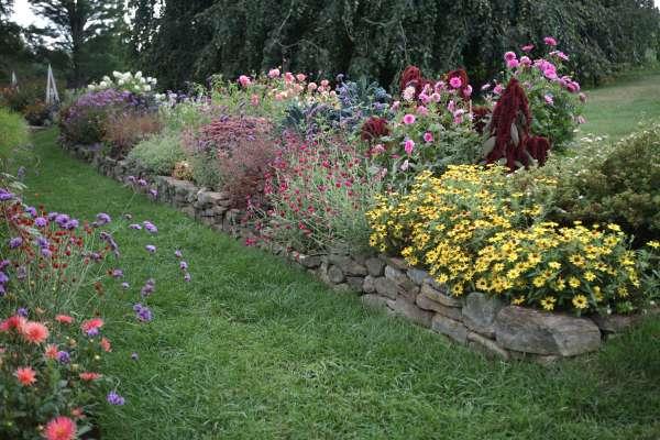 flower borders 10 essential tips
