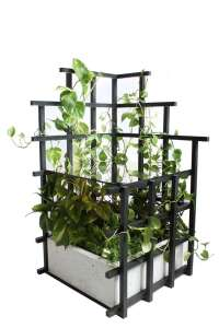 Indoor Vines: Trellis Tables and Shelves from Moonish ...