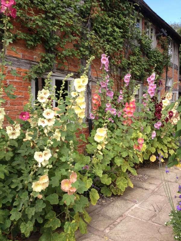garden ideas steal wollerton