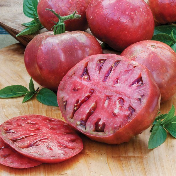 best-tomatoes-to-grow-in-a-container_2