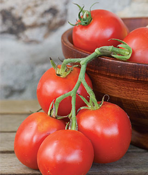 best-tomatoes-to-grow-in-a-container_6