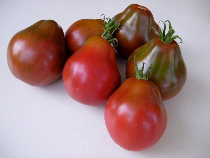 best-tomatoes-to-grow-in-a-container_9