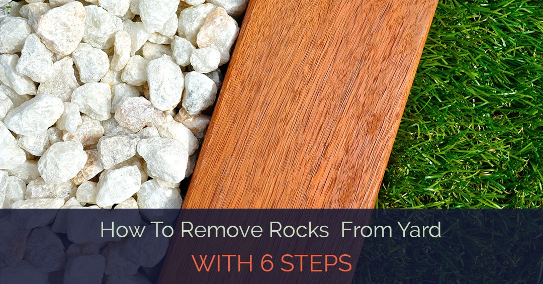 learn how to remove rocks from yard with 6 steps
