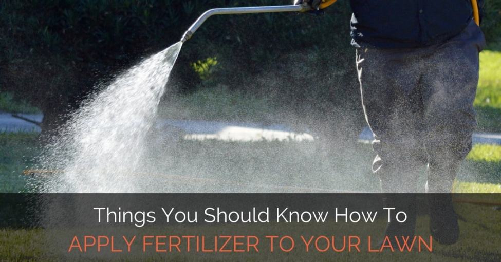 apply-fertilizer-to-your-lawn
