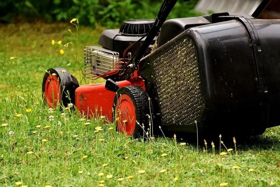 create-beautiful-lawn-2-min