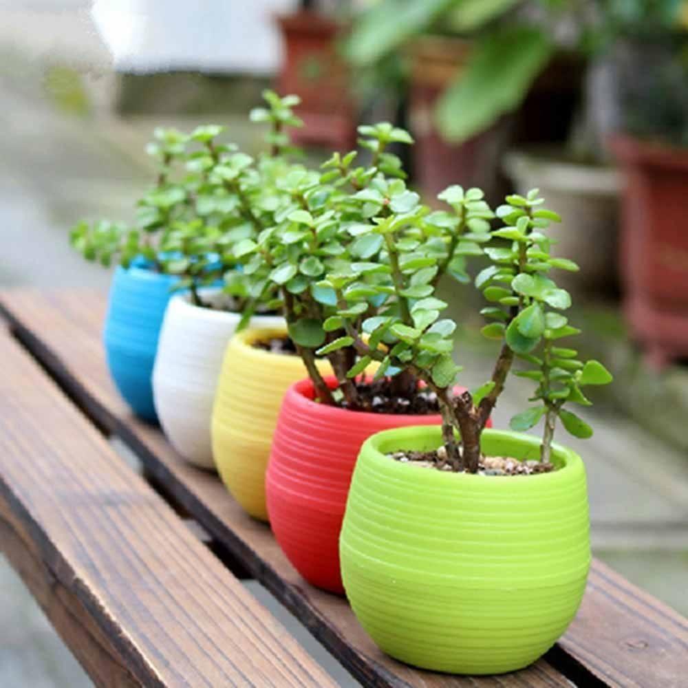 make-a-beautiful-garden-3