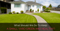 What Should We Do To Keep Small Yard Green And Healthy?