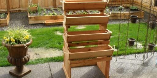 gardening-choose-wood-planter