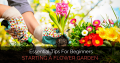 Starting A Flower Garden: Essential Tips For Beginners