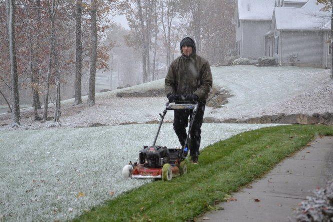 lawn-in-winter