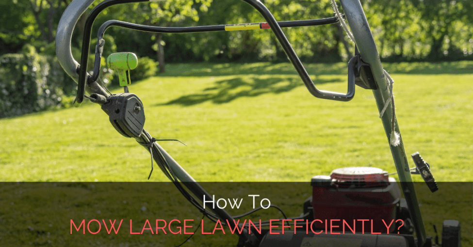 how-to-mow-large-lawn-efficiently