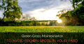 Green Grass Maintenance to Avoid Brown Spots in Your Yard