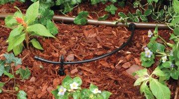 Rain Bird hose T22-250S Drip Irrigation hose Review