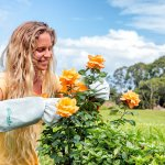 5 best garden gloves Reviews 2017: Complete Buying Guide