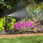5 Best best lawn sprinkler Reviews 2017 : Complete Buying Guide