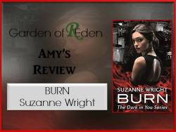 burn review photo