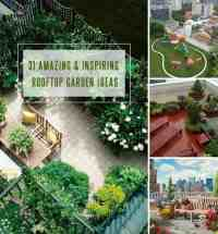 31 Amazing and Inspiring Rooftop Garden Ideas | Gardenoid