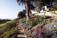 Lovely Garden Path Ideas  Page 2 of 6  Garden Outline