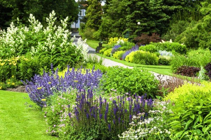 Raised Vegetable Garden Patio