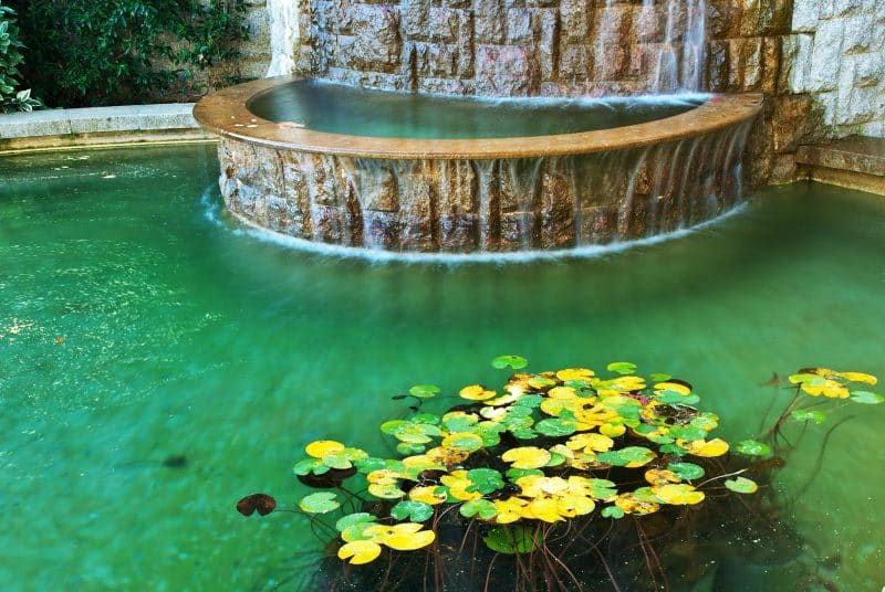 27 Garden Pond Ideas that Will Make You Feel Relaxed in