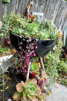 Recycled Planter Ideas Garden Outline