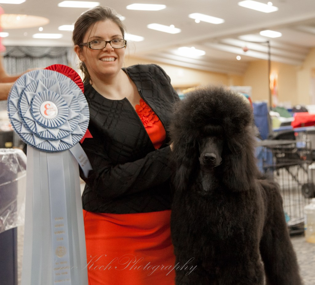 Ella BPIS under judge Avery Gaudin, the first of 9 CKC and AKC Best Puppy in Show wins!