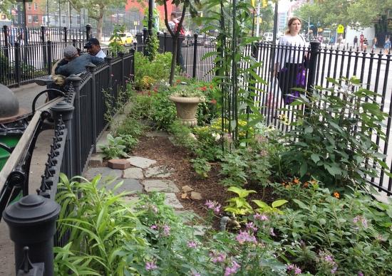 Tiny Gardens in Greenwich Village  GardenRant